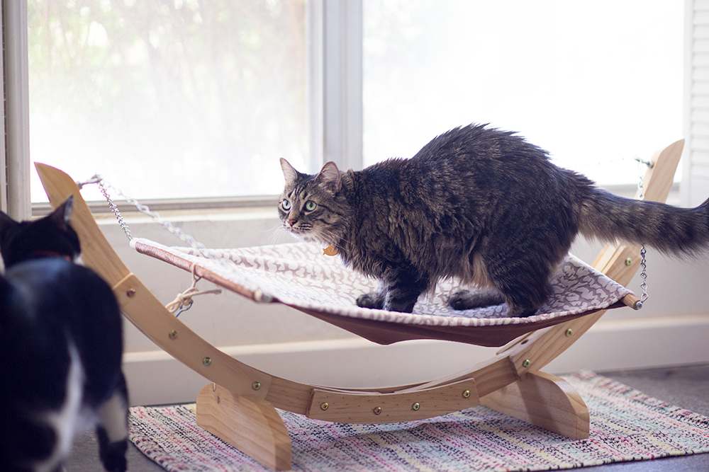 Pet Magsin Cat Hammock - littleladylittlycity.com