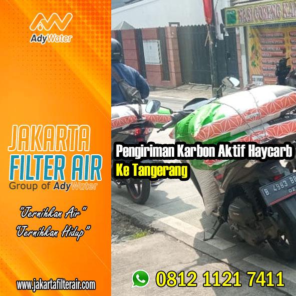 Karbon Aktif | Harga Karbon Aktif | Jual Karbon Aktif Ady Water | untuk Filter Air | Ady Water | Jakarta | Siap Kirim Ke Pinangsia Tamansari Jakarta Barat