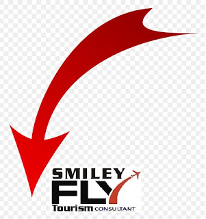 APNI TRAVEL AGENCY : Vietman VISA | UK Business Conference | Turkey