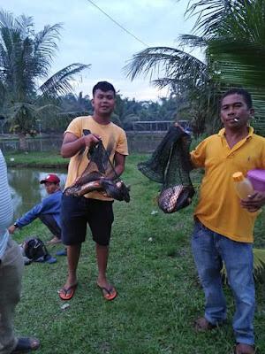 Hallo teman-teman, di artikel - artikel sebelumnya saya selalu memberikan sajian tips & trik mengenai seputar dunia Teknologi, nah kali ini saya ingin membahas mengenai tempat refresing serta tempat menyalurkan hobby kamu, terkhususnya kamu yang hobby memancing di daerah Medan.    Sebelum jauh lebih dalam mengenai kolam pancing di Medan, saya akan memberikan informasi mengenai jenis-jenis sistem memancing yang ada di Indonesia.    4 Jenis Kolam Pancing Yang Ada Di Indonesia.      1. Kolam Pancing Harian    Kolam pancing hasian adalah jenis game memancing yang peraturannya adalah kamu bebas memancing yang berlangsung selama 1 hari oprasional kolam pancing,dan dapat membawa semua hasil pancingan yang didapat hanya dengan membayar biaya awal masuk kolam sesuai dengan ketentuan pemilik kolam pancing.    2. Kolam Pancing Kiloan    Kolam pancing kiloan adalah sistem memancing yang akan membayar biaya memancing sesuai dengan harga ikan yang didapat dari kolam tersebut yang nantinya ikan tersebut dapat dibawa pulang.    3. Kolam Pancing Lomba    Kolam pancing lomba merupakan jenis lain dari kolam pancing harian,yang dimodifikasi untuk menunjukkan skil pemancing dalam mendapatkan ikan terbesar atau ikan yang diberi tanda, dalam game memancing ini kamu dapat membawa pulang hadiah dari panitia yang telah disiapkan sebelumnya.    4. Kolam Pancing Galatama    Kolam pancing galatama Jenis kolam pancing dengan tingkat yang cukup sulit untuk menunjukkan skil dari pemancing, sistem ini seperti turnamen memancing,karena dalam sistem ini ada beberapa aturan aturan mengenai waktu memancing,sistem rangkaian pancing, umpan yang digunakan.      15 Kolam Pancing Dimedan Yang Terbaik Buat Kamu Coba Kunjungi      Setelah kamu mengetahui jenis jenis peraturan main dikolam pancing, kamu pasti buru buru kan ingin pergi ke kolam pancing? Nah,berikut beberapa Kolam Pancing Di Medan yang dapat kamu kunjungi yang pastinya ikan ikannya banyak dan tidak mengecewakan.   1. Kolam Pancing Bilal    Kolam