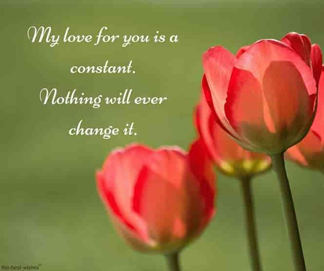 romantic message to my love with flowers