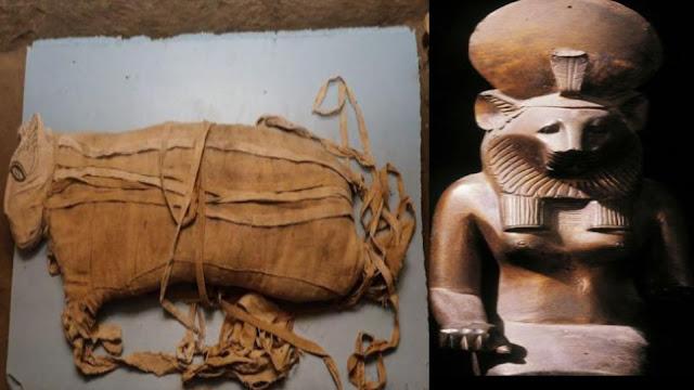 اكتشاف،أسرار الفراعنة،مومياوات،الأسود،تحنيط،الفراعنة،مصر القديمة،قدماء المصريين،سقارة