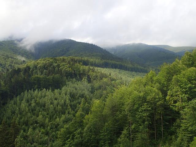 Krajobraz ukraińskich Karpat - okolice Kołoczawy