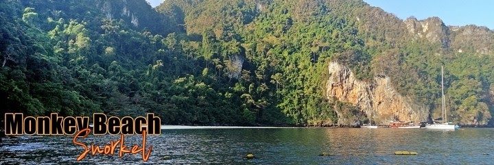 Snorkel-Monkey-Beach-Phi-Phi-Tailandia