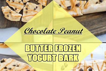 Chocolate #Peanut #Butter #Frozen #Yogurt #Bark