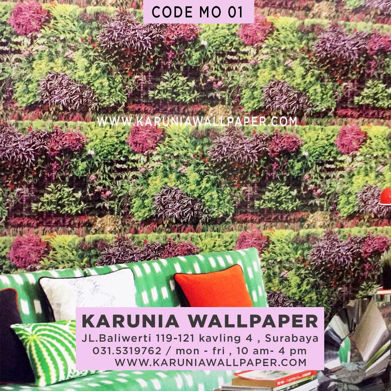 jual wallpaper dinding warna warni lucu