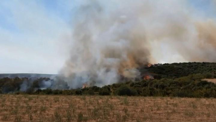 Φωτιά στην περιοχή Αγνάντια της Αλεξανδρούπολης - ΒΙΝΤΕΟ