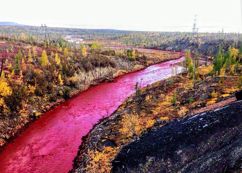 «Кривава» річка поблизу Норильського гірничо-металургійного комбінату в Росії