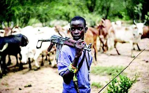 More Killings: 'Herdsmen' Kill 42, Sack 12 Villages In Taraba