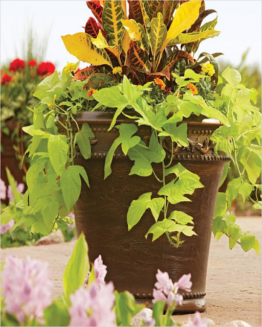 large garden planters for small trees for sale
