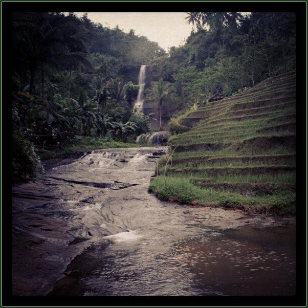 Anakan Sungai dan Bedeng Sawah Di Curug Silancur Wadasmalang - Keindahan Air Terjun Pelangi Yang Memikat Hati