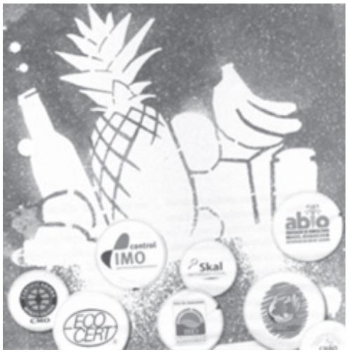 ENEM 2009: Você sabia que as metrópoles são as grandes consumidoras dos produtos feitos com recursos naturais da Amazônia? Você pode diminuir os impactos à floresta adquirindo produtos com selos de certificação