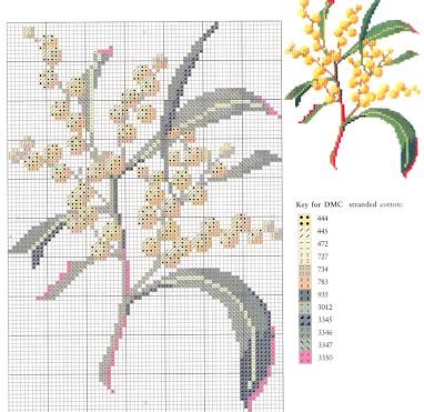 Motivi per punto croce  a tema fiori e spezie-mimosa