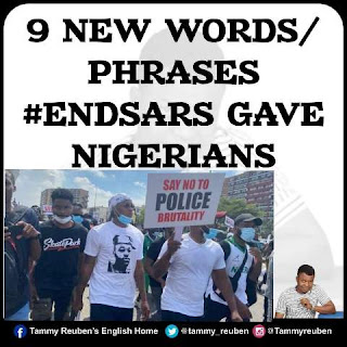 9 New Words/Phrases #EndSARS Gave Nigerians