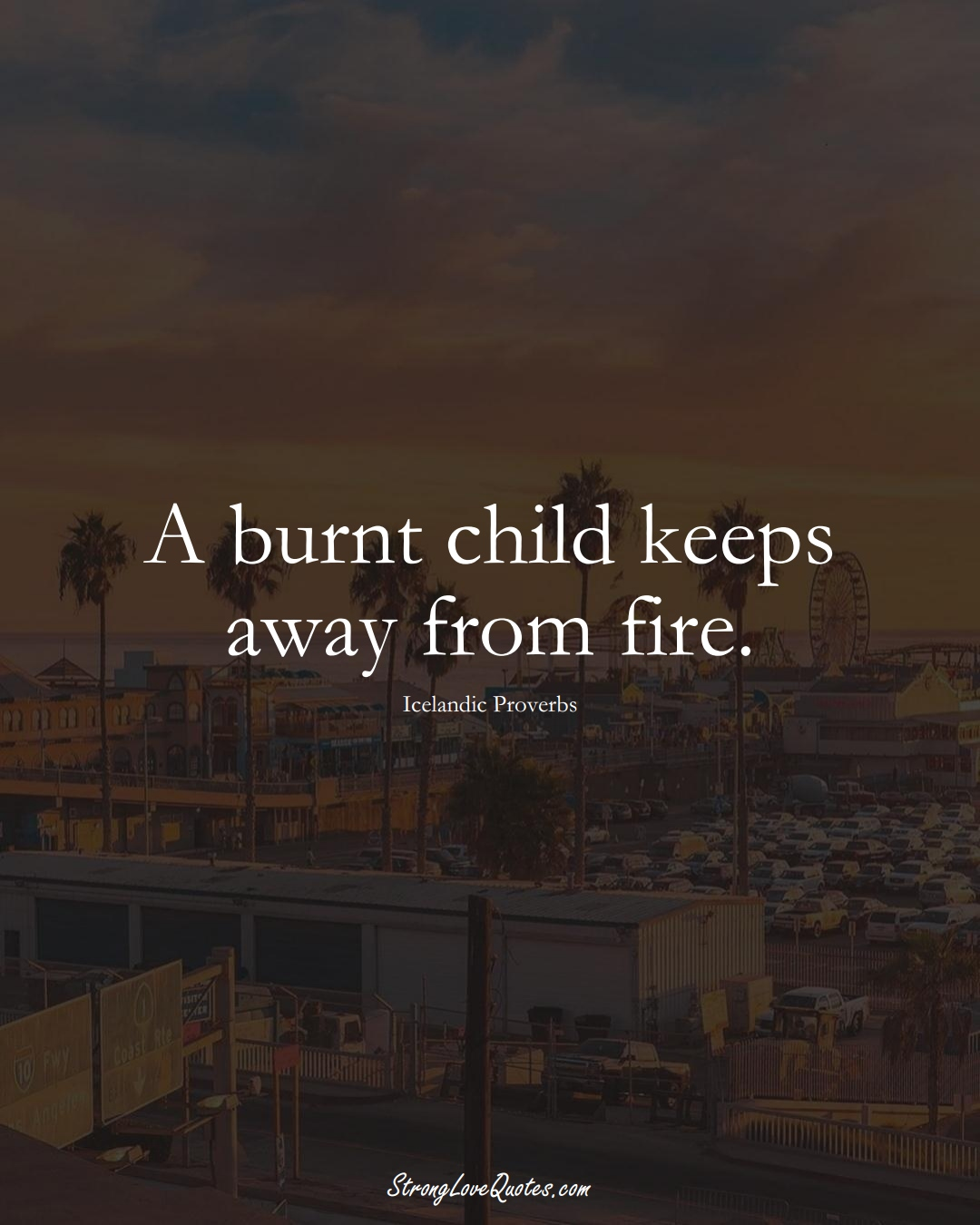 A burnt child keeps away from fire. (Icelandic Sayings);  #EuropeanSayings