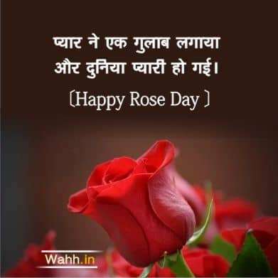 Happy Rose Day Quotes for Boyfriend In Hindi