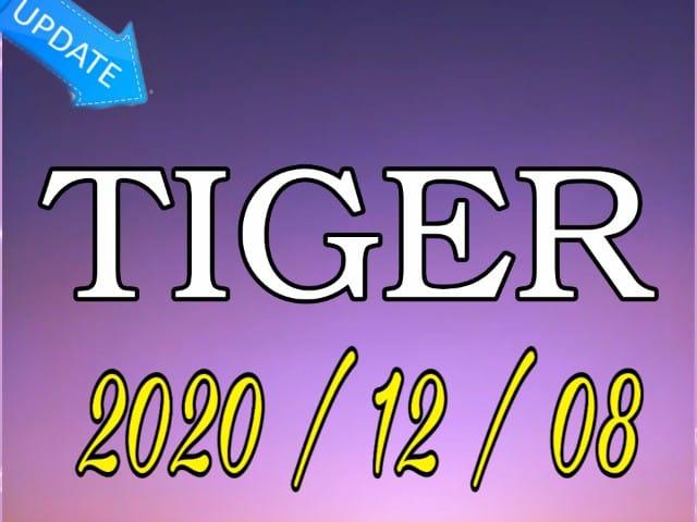 جديد الموقع الرسمي تايغر  TIGER  بتاريخ اليوم 20201208