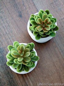 quick and easy Dollar Store succulents
