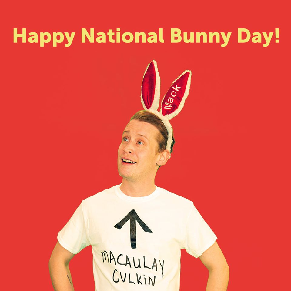 National Bunny Day Wishes Pics