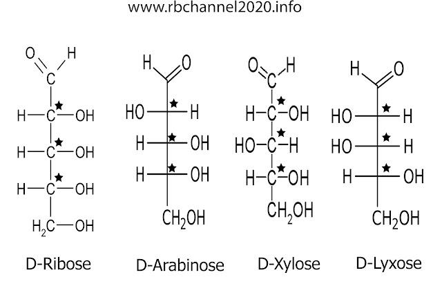 الصيغة الجزيئية والبنائية للسكريد الخماسي