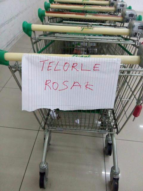 Telorle