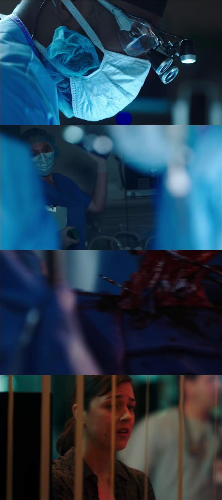 The Resident Temporada 2 Completa HD 720p Latino