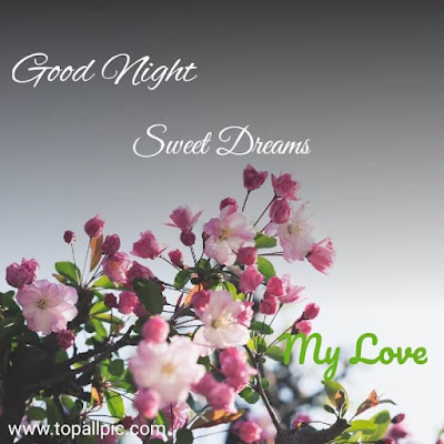 Good Night my love Sweet Dreams Images
