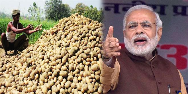 Global Potato Enclave 2020; Indiathinkers