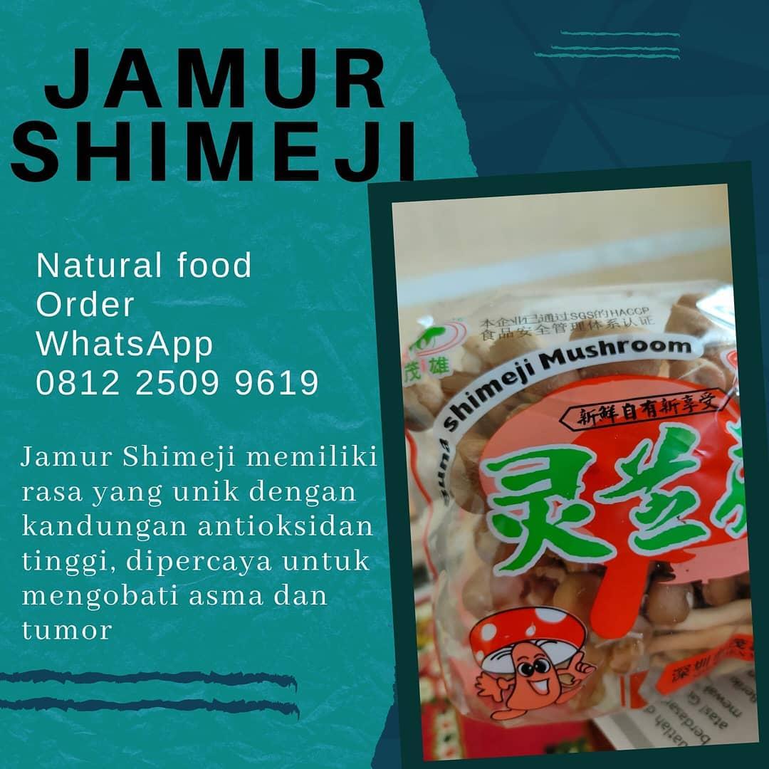 Dua Puluh Lima Manfaat Jamur Shimeji Yang Perlu Diketahui