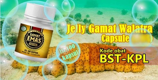 5 Keunggulan Walatra Jelly Gamat Emas Kapsul Dari Obat Kapsul Lain