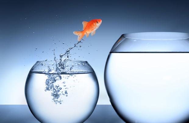Câu chuyện về sự nhạy bén và lối tư duy mở trong công việc