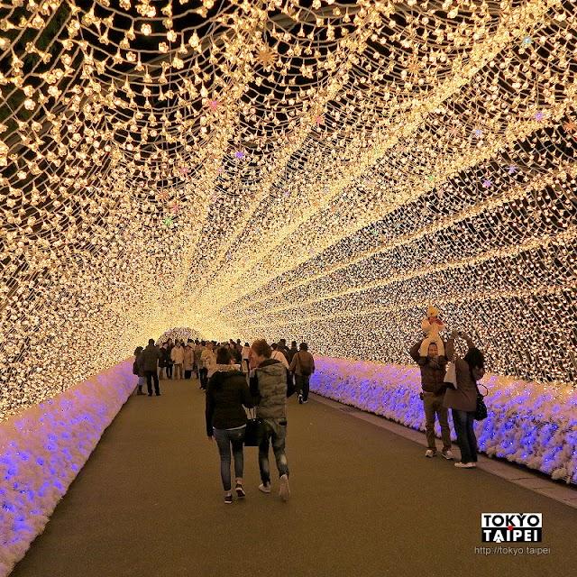 【名花之里】日本最大燈海 10層樓高燈牆演出華麗燈光秀