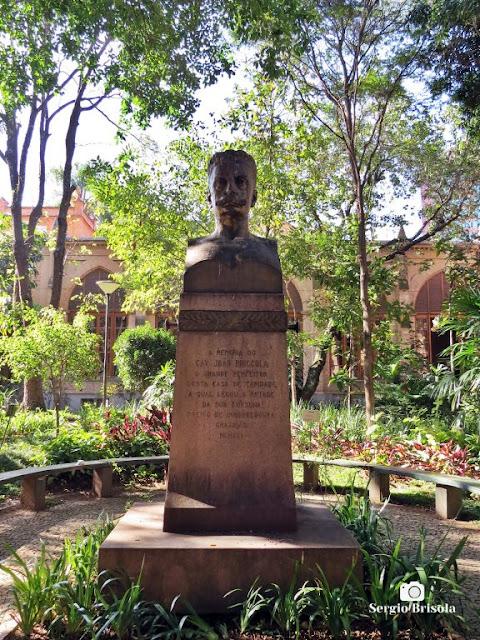 Close-up do Busto de João Bricola - Santa Casa SP - Vila Buarque - São Paulo