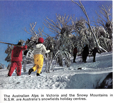 The Australian Alps in Victoria and the Snowy Mountains in N.S.W. are Australia's snowfields holiday centres.