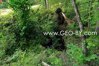 Wojciechowo (Novospask). First found German bunker from the First World War. Destroyed