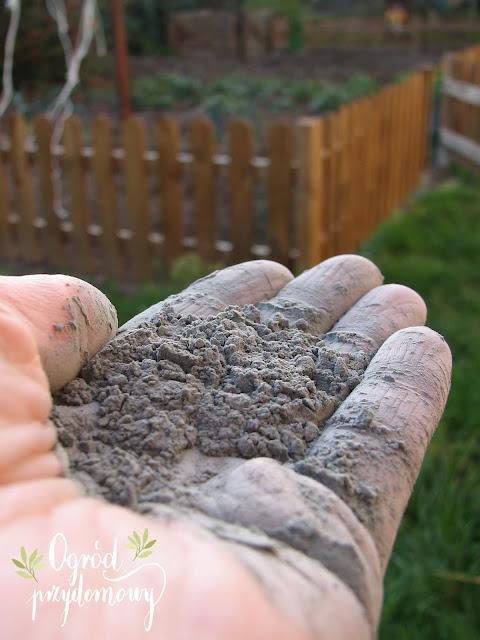 preparaty na szkodniki i choroby roślin, szkodniki i choroby, ogród przydomowy