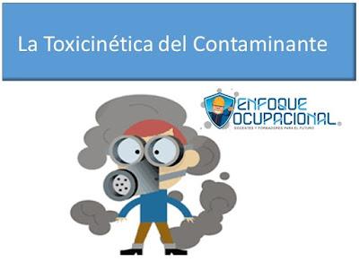 La toxicocinética del contaminante. El  xenobiótico,  absorción, distribución, metabolismo y excreción.