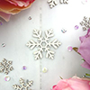 http://www.makeitcrafty.com/pretty-snowflake-chipboard-set.html
