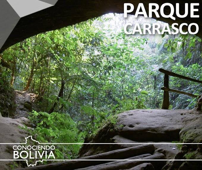 Bolivia: Parque Nacional Carrasco (Villa Tunari)