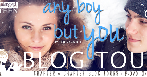 Any Boy But You Blog Tour: #Review & #GuestPost from Julie Hammerle!