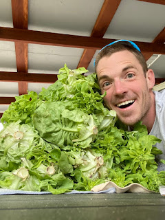 Man with Lettuce