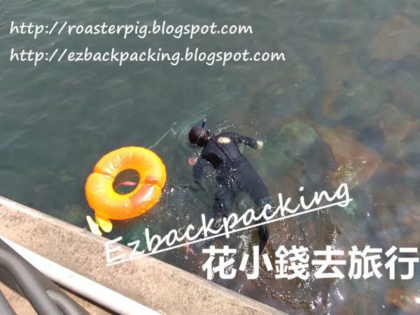 黃石碼頭釣魚