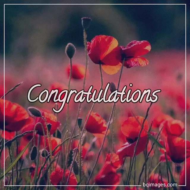 congratulations images free