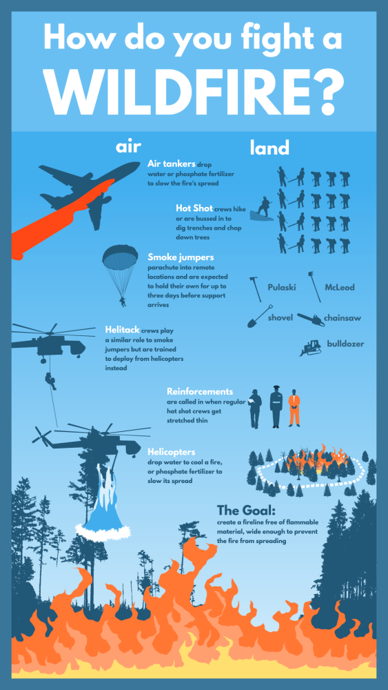 How Do You Fight a Wildfire #infographic