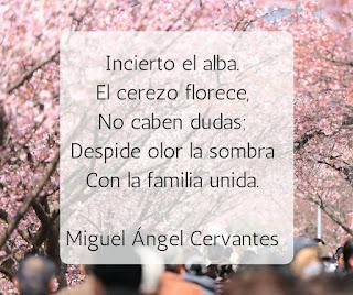 blogdepoesia-poesia-miguel-angel-cervantes-cerezo