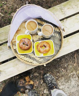 kahvia ja munkkirinkilää tarjottimella mäyräkoiran kerjätessä