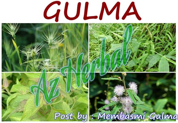 Membasmi Gulma