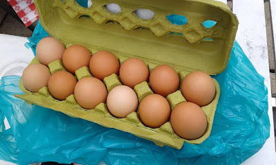 brown eggs in a chartreuse carton  sitting on a turquoise bag