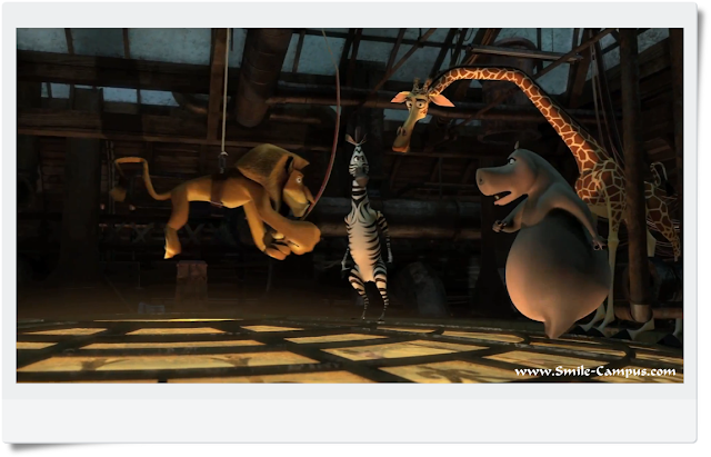 Madagascar 3 HD Movie Pics No. 16
