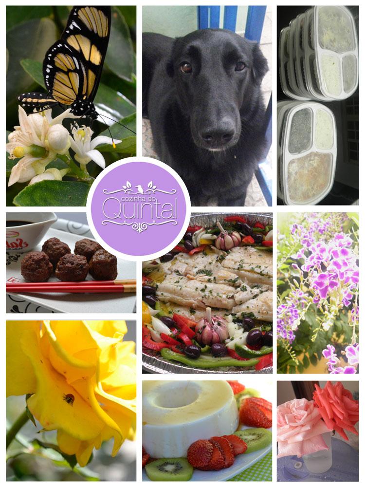 Blogagem Coletiva 52 Semanas de Gratidão na Cozinha do Quintal